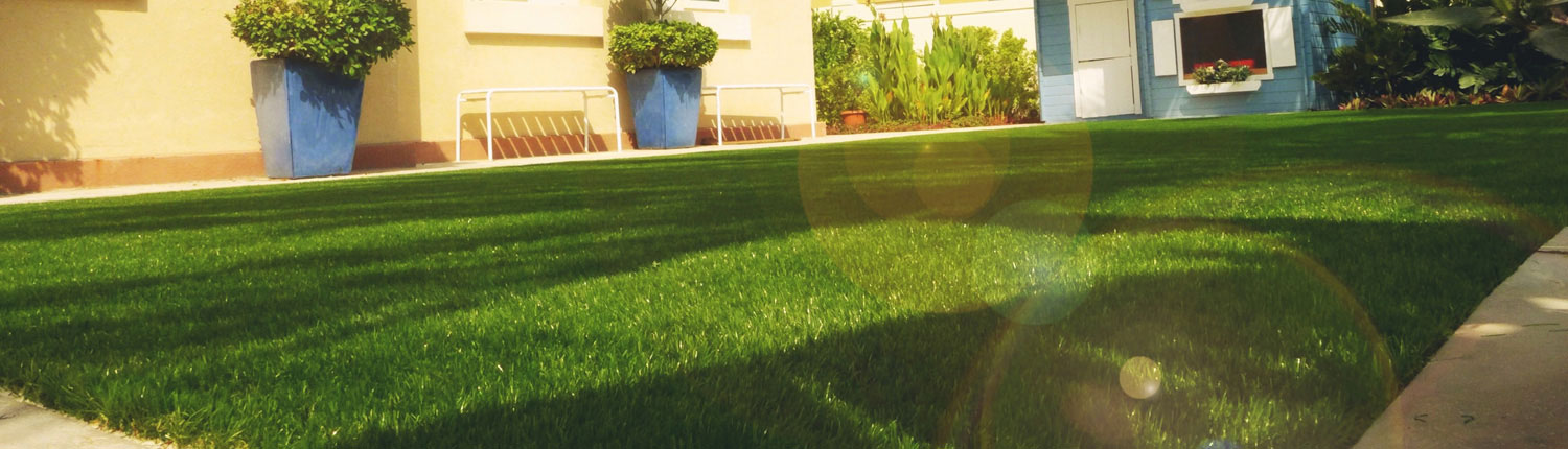 artificial grass india supplier Chennai